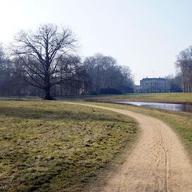 Broekhuizen Estate park 2 by Anita Berghoef - City,  Street & Park  Historic Districts ( winter, tree, park, path, trees, broekhuizen estate park, house, road, landscape, estate )