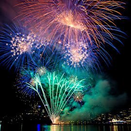 fireworks on Sydney Harbour by David Thompson - Abstract Fire & Fireworks ( colourful, green, night time, fireworks, celebration,  )