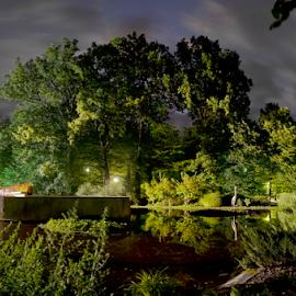 Night in a park by Predrag Uskokovic - City,  Street & Park  Vistas