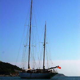 Schooner Sylvia by Ilse Gibson - Transportation Boats ( superyacht, luxury cruising, luxury yacht, luxury sailing, large sailing yacht )