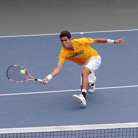 low forehand volley by Ron Tong - Sports & Fitness Tennis