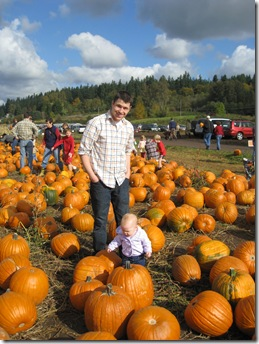 Pumpkin Patch 129