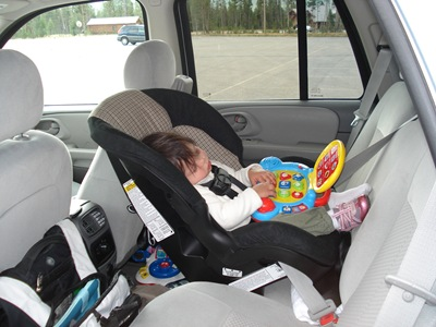 Littles Snoozing In The Scenera At Flagg Ranch Yellowstone National Park 15 Months Old