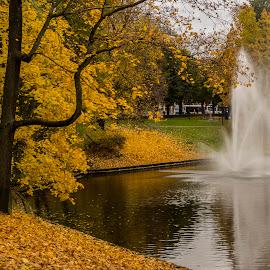 by Kristine Dokane - City,  Street & Park  City Parks (  )