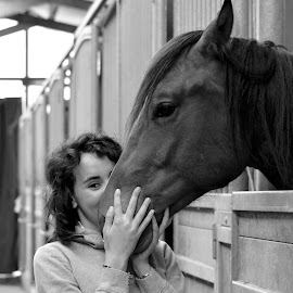 True Love by Federica Lesinigo - Animals Horses ( #italy #quarterhorse #truelove #love #smile )