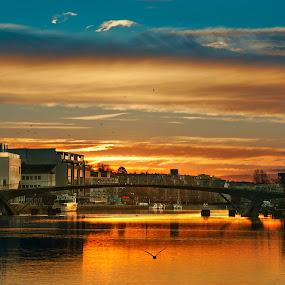 Sunrise - Fredrikstad by Geir Andersen - City,  Street & Park  Night ( water, geir andersen, fredrikstad, vesterelva, blue, gangbru, bridge, sunrise, river )
