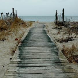 A Nice Walk by Rob Kovacs - Novices Only Landscapes (  )