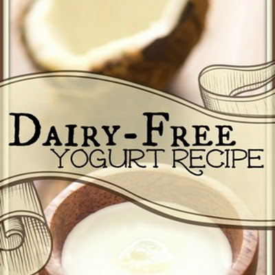Dairy-free Yogurt
