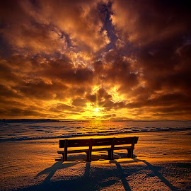 I Would Trade A Thousand Ever Afters by Phil Koch - Landscapes Sunsets & Sunrises ( vertical, photograph, bench, farmland, yellow, storm, leaves, love, sky, nature, tree, autumn, shadow, snow, flower, wind, orange, twilight, agriculture, horizon, portrait, dawn, winter, environment, season, national geographic, serene, trees, floral, inspirational, natural light, wisconsin, phil koch, spring, sun, photography, farm, ice, horizons, rain, inspired, clouds, office, park, green, scenic, morning, shadows, wild flowers, field, red, blue, sunset, fall, peace, meadow, summer, sunrise, earth, landscapes, HDR, Landscapes, , Hope, vertical lines, pwc, public, furniture, object )