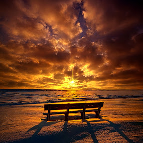 I Would Trade A Thousand Ever Afters by Phil Koch - Landscapes Sunsets & Sunrises ( vertical, photograph, bench, farmland, yellow, storm, leaves, love, sky, nature, tree, autumn, shadow, snow, flower, wind, orange, twilight, agriculture, horizon, portrait, dawn, winter, environment, season, national geographic, serene, trees, floral, inspirational, natural light, wisconsin, phil koch, spring, sun, photography, farm, ice, horizons, rain, inspired, clouds, office, park, green, scenic, morning, shadows, wild flowers, field, red, blue, sunset, fall, peace, meadow, summer, sunrise, earth, landscapes, HDR, Landscapes,  )