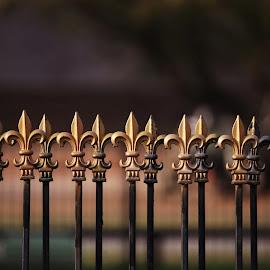Louisiana Fence by Emilee Self - Buildings & Architecture Other Exteriors ( fleur de lis )