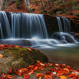 River by Alexander Stoyanov - Nature Up Close Natural Waterdrops ( autumn, waterfall, trees, forest, leaves, rocks, river )