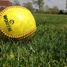 Softball by Lacey Dumas - Sports & Fitness Other Sports ( field, balls, grass, softball, yellow, dirt )