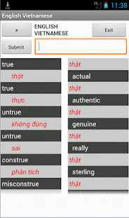 English Vienamese Dictionary - screenshot