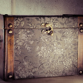 Antique Chest by Javier Luces - Artistic Objects Antiques ( home, old, still life, chest, house, light, antique )