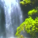 Forest Water Falls icon
