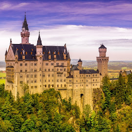 The Neuschwanstein Castle by Rooney Tham - Buildings & Architecture Public & Historical