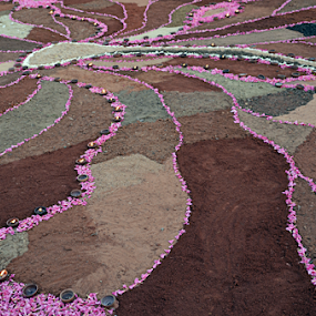 Unity by Arvind Akki - Abstract Patterns ( abstract, lnes, pink, pathways )