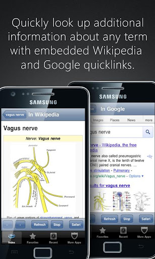 【免費醫療App】Anatomy Pronunciations-APP點子