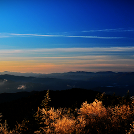 View from Clingman's Dome by Chuck Hagan - Landscapes Mountains & Hills ( clingman's dome, gatlinburg, smokies )