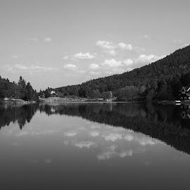 Golcuk Lake by Mustafa Çetinkaya - Landscapes Forests ( turkey bolu golcuk lake b&w mirror )