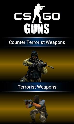 CS:全球攻勢槍