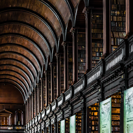 Trinity College Library Ceiling by Robert Willson - Buildings & Architecture Public & Historical ( historic districts, books, book of kells, old, ireland, arch, historic architecture, dublin, college, trinity college library, historic district, arch ceiling, architecture, historic library, robert willson, historic, old books, historic books, bob willson, historical, leather books, leather, Architecture, Ceilings, Ceiling, Buildings, Building )