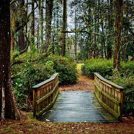 Greenfield by Lou Plummer - City,  Street & Park  City Parks