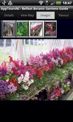 Botanic Gardens Belfast Guide