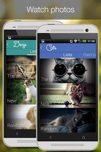 Cat Vs Dog -pet photos - screenshot