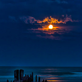 Moonrise of Gold by Sue Matsunaga - Landscapes Starscapes