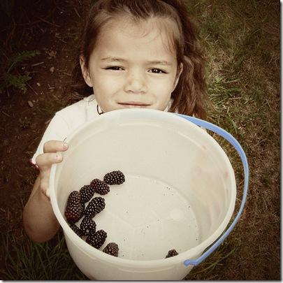 lala berries