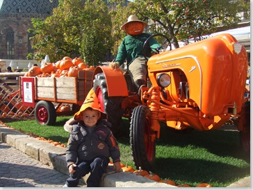 Bolzano Festa della zucca! 011