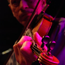 Fiddler on Stage Close Up by Florin Marksteiner - People Musicians & Entertainers ( violin, spotlights, fiddle, stage, closeup,  )