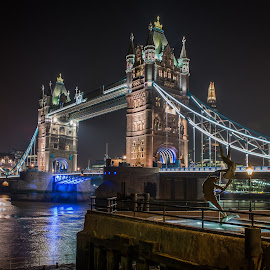 by Sheldon Anderson - Buildings & Architecture Public & Historical ( night photography, london, 2014 )