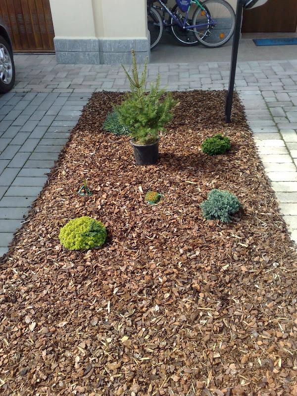 Aiuola di aromatiche forum di - Sacchi di terra per giardino ...