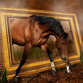 What are you? by Angelica Glen - Digital Art Animals ( mouse, frame, fog, grass, horse,  )