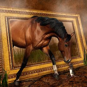 horseframe.jpg