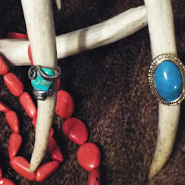 Turquoise Rings by Marilyn Bass - Artistic Objects Jewelry ( arkansas photographer, turquoise, deer antlers, antlers, jewelry, turquoise rings, arkansas )