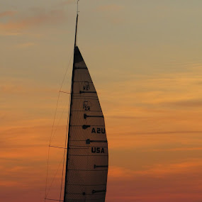 Sailing At Sunset by Diane Butler - Transportation Boats ( boating, sailing, sunset, lake, sailboat )