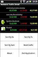 Screenshot of Network Traffic Detail