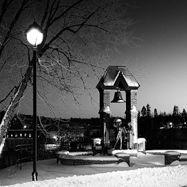 tribute statue by Robert Mills - Buildings & Architecture Statues & Monuments ( bell, statue, winter, black and white, snow, monument, tribute, street lamp )