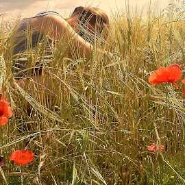 Field of love by Ciprian Apetrei - Nature Up Close Other plants ( field, field flower, nature up close, france, poppies )