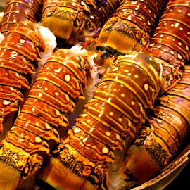 Lobster Tails by Debbie Piccone - Food & Drink Meats & Cheeses ( seattle, lobster, fish market )