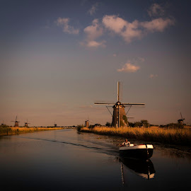 Windmills at dusk by David Kooijman - Landscapes Travel ( water, kinderdijk, holland, square, windmills, dusk )
