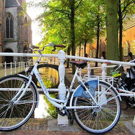 by Ljiljana Pejcic - Transportation Bicycles