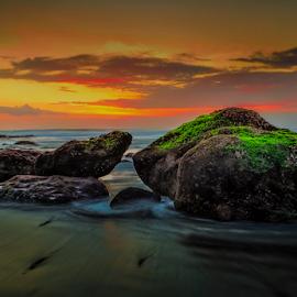 by Imam Barnadi - Nature Up Close Rock & Stone