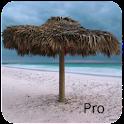 Island Life Pro