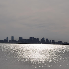 Boston  as seen  from  Deer Island,  Winthrop , MA  ---   May  7,  2014   -  A  brilliant  day  on  Mother Earth  ! by Domenic Silvi - Nature Up Close Water (  )