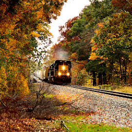 Moving Train by Kourtney Monroe - Transportation Trains ( fall, color, colorful, nature )
